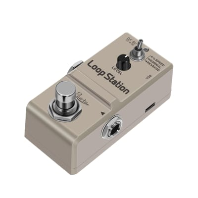 Rowin Loop Station Looper Effects Pedal Unlimited Overdubs 10 Minutes of Looping 1/2 time and Revers