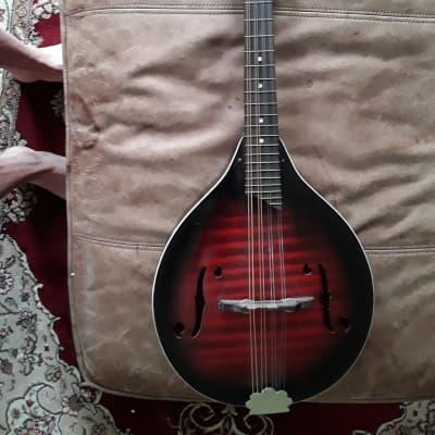 Harmony Mandolin Monterey H410 for sale
