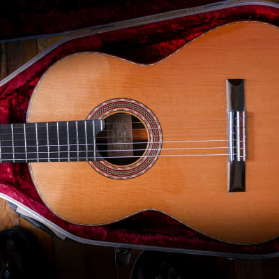 Michael Gee Double Top w/ Brazilian Rosewood No.499 2005 for sale