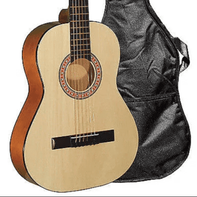 Indiana COLT Standard Size 36-Inch Spruce Top 6-String Acoustic Guitar w/Gig Bag