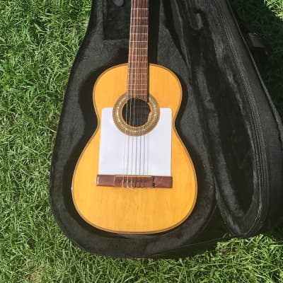Vintage Flamenco Guitar, Brazilian Rosewood / Spruce, Made In Spain, Telesforo Julve, Spanish Classical, with case for sale