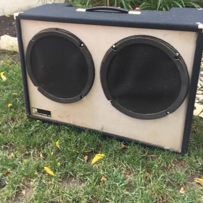 70s Polytone Maxi Brute - Model 104 for sale