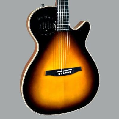 Godin Multiac Steel Duet Ambience Electric Guitar