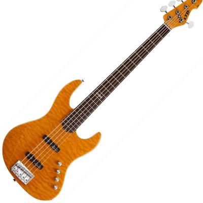 ESP Elite J-5