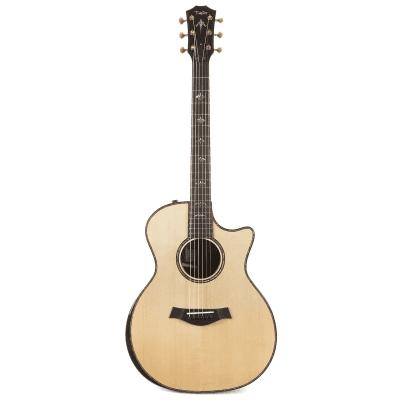Taylor 914ce with V-Class Bracing 2018 - 2020