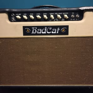 "Bad Cat Hot Cat 30 30-Watt 1x12"" Guitar Combo"