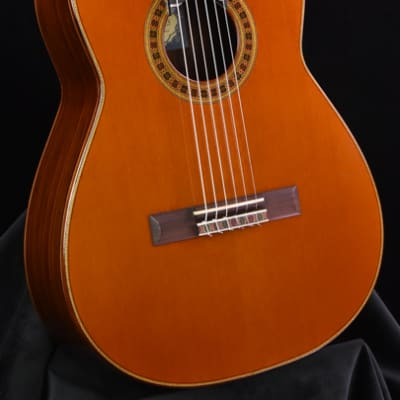 Used Cervantes Rodriguez Concert 2016 for sale