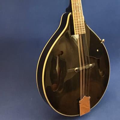 Ashbury Mandolin w/Case for sale