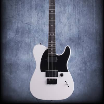 Fender Jim Root Telecastercaster With Case White