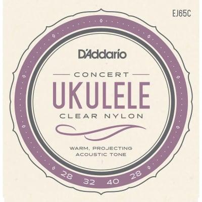 D'Addario EJ65C Pro-Arté Custom Extruded NylonUkulele Strings Concert Standard