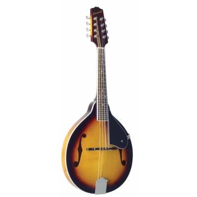 Savannah Model SA-120 A Style all Solid Mandolin in a Sunburst Finish for sale