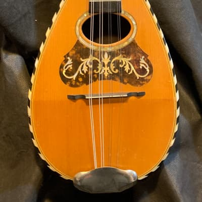 Lyon & Healy  Bowl Back  Mandolin 1890s - Brazilian RW - All Original - Case - Player - Ships FREE!! for sale