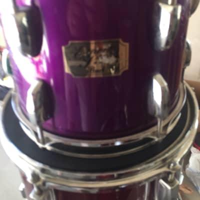 "Pearl Export 10"" Tom Concord Purple"