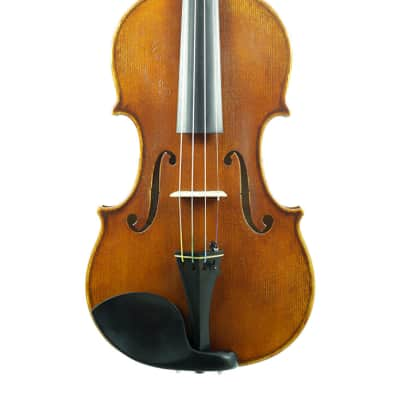 Eastman VL702ST Wilhelm Klier Professional 4/4 Violin Outfit