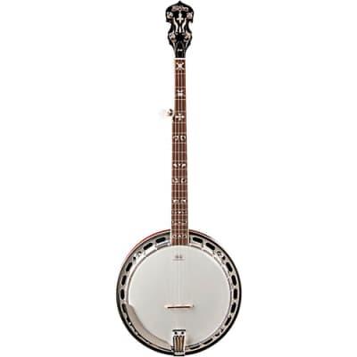 Washburn Americana B16 Resonator Banjo for sale