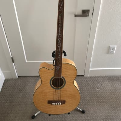 Michael Kelly Dragonfly 5 Left Handed Fretless Bass for sale
