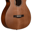 Teton STG105CENT-TF 105 Series Grand Concert Red Cedar 6-String Acoustic-Electric Guitar w/Hard Case