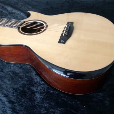 New Terry Pack OWS acoustic guitar, solid wenge b/s, spruce top, new model design, special features for sale
