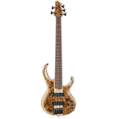 Ibanez BTB845V 5-String Electric Bass - Antique Brown Stained Low Gloss
