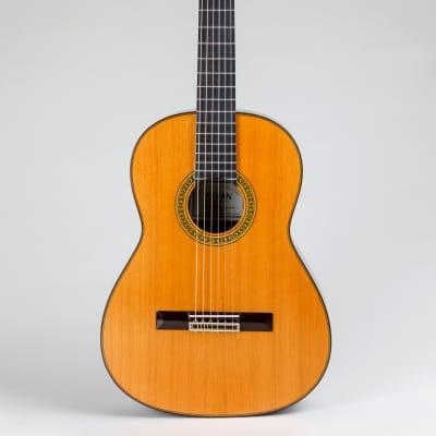 Pavan TP-30  Cedar Spanish Classical Guitar for sale