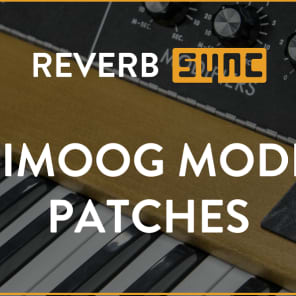 Patches for Minimoog Model D - SYNC Exclusive