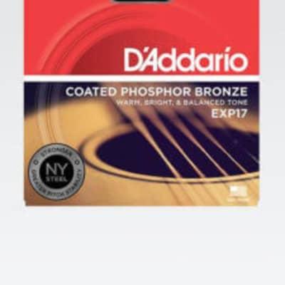 D'Addario EXP17 Coated Medium Acoustic Guitar Strings