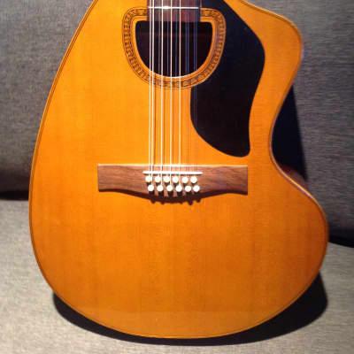 Vintage Giannini 12 String