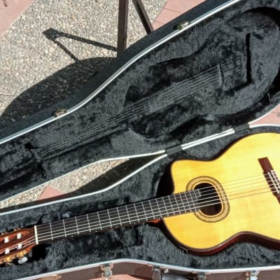 Takamine TH90 Hirade classic With Cool Tube Palatethic Pickup And Suonboard Transducer for sale