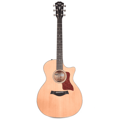 Taylor 514ce with V-Class Bracing 2019 - 2020