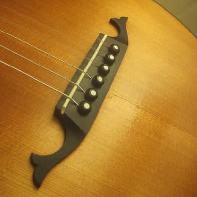 Master Penzel Lute 1987 Gitarrenlaute Nylon for sale