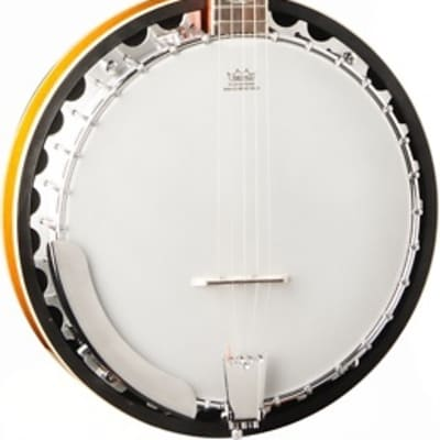 Washburn Americana B10 5-string Resonator Banjo for sale