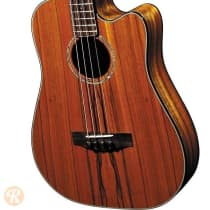 Fender Victor Bailey Acoustic Bass 2008 Natural image