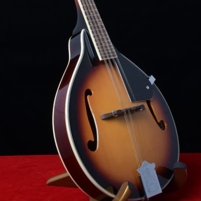 Rover RM-25s A-Model Mandolin for sale