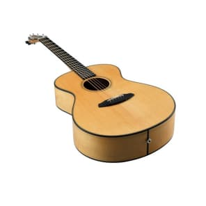 Breedlove Oregon C20/SMYe  Custom Shop for sale