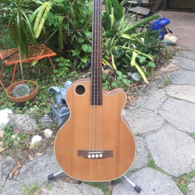 Boulder Creek Fretless Acoustic Bass for sale