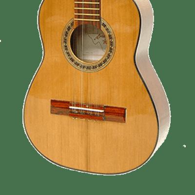 Paracho Elite Guitars Columbian 12 String Tiple for sale