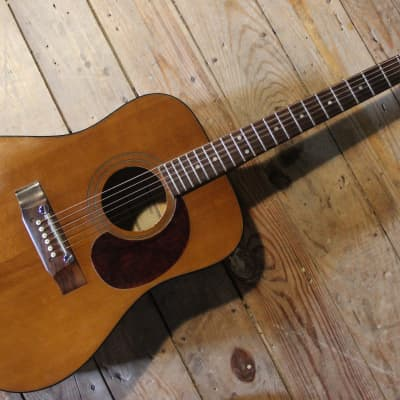 Harptone E-6NC *Project Guitar* for sale