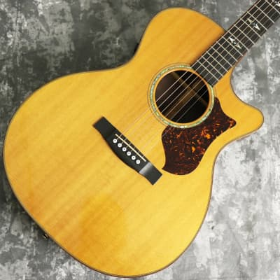 Martin GPCPA1 for sale