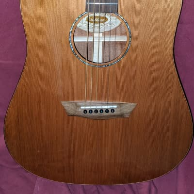 Washburn WD160SWCE Dreadnought Timber Ridge for sale