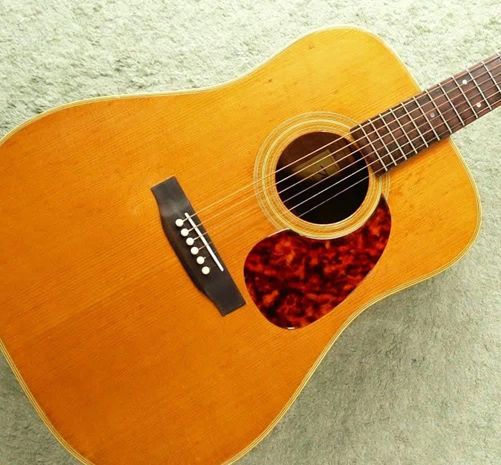 Suzuki Dreadnought Guitar