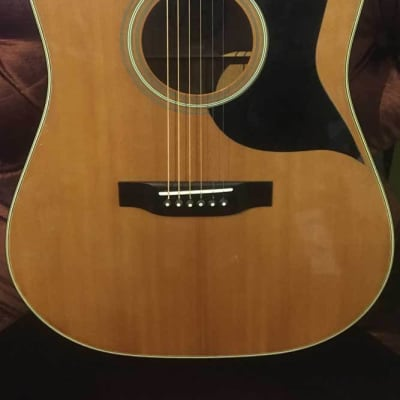 Goya G320 G81923 Acoustic Guitar Part of CF Martin Co. (Pre-Owned) (Glen Quan Private Collection) for sale