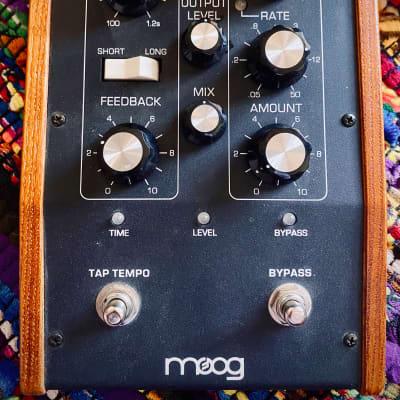 Moog MF-104MSD Moogerfooger Super Delay