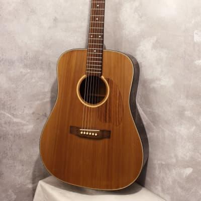 Daion Mugen Mark I Dreadnought Acoustic 1981 for sale