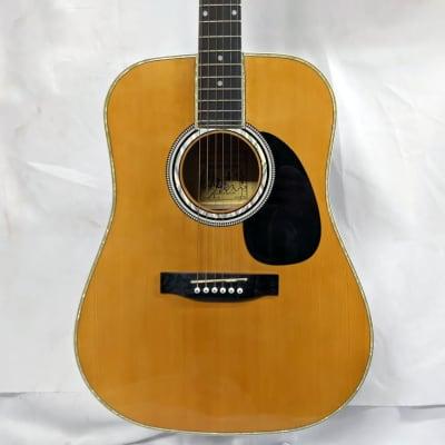 Elezan AL-100 Electric Acoustic Dreadnought Guitar for sale