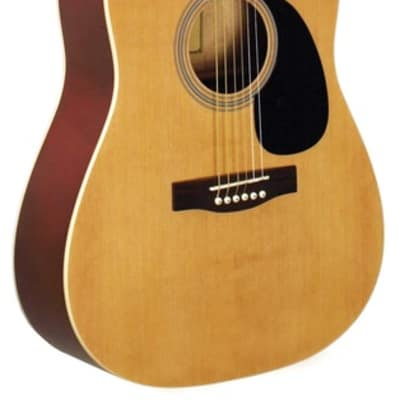 Indiana ID-100 Dreadnought Satin Acoustic Starter Guitar Package for sale