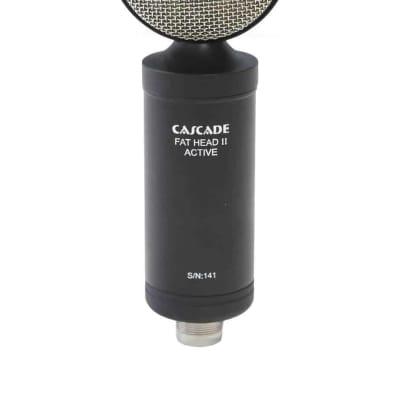 Cascade Fat Head II Active/Passive Ribbon Microphone in Black