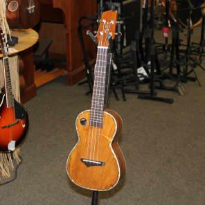Boulder Creek Riptide EUC-5NG Concert for sale