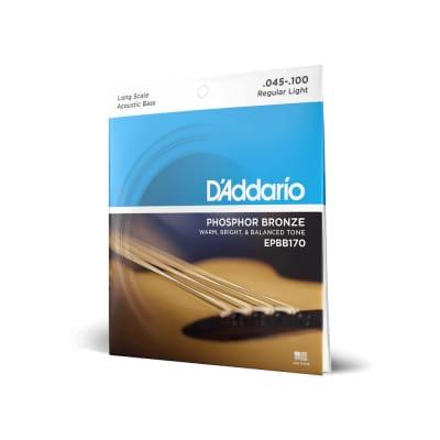 "D'Addario Phosphor Bronze Acoustic 4-String Bass Strings - Regular Light (45-100) - Long Scale (34"")"