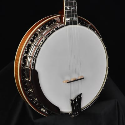 Ome Odyssey Bluegrass Five String Banjo- Radius Fretboard for sale