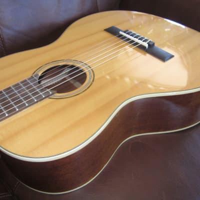 Austin AA45C Parlor Classical Acoustic Guitar Natural for sale